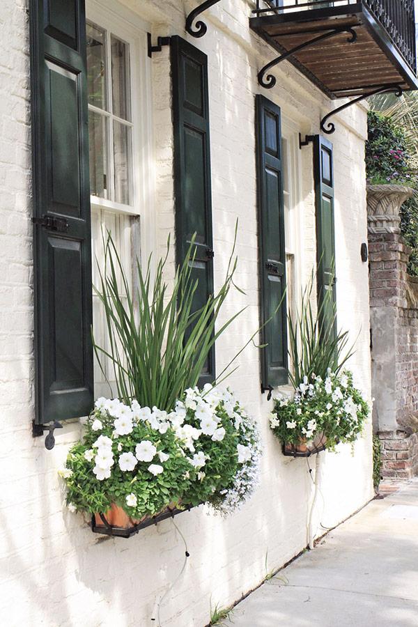 Charleston window flower bloxes