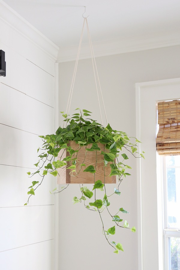 DIY hanging planter with wood and rope