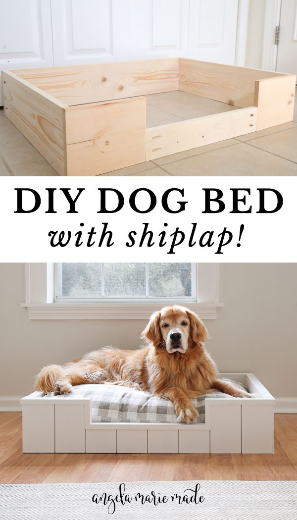 DIY dog bed with shiplap and golden retriever