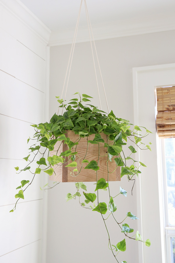DIY hanging planter with wood and rope by window