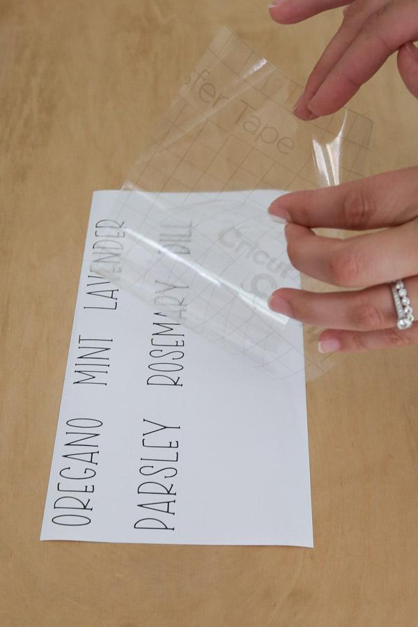 apply transfer tape to vinyl DIY plant labels