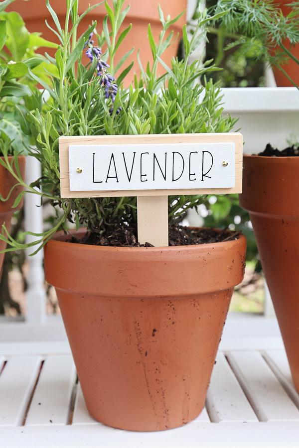 Lavender DIY garden marker in pot